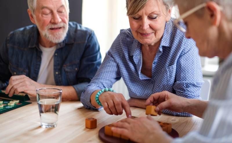 Un outil de prévention par le jeu mis en place par la Société Alzheimer de l'Estrie