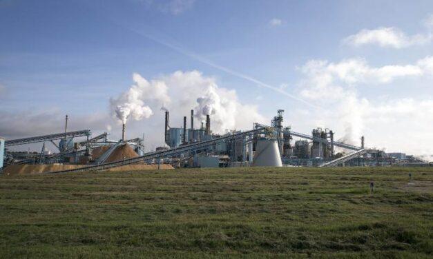 Paper excellence conclut un accord pour l'acquisition de Domtar